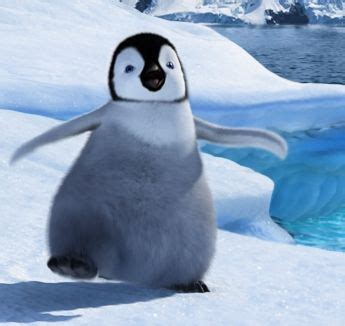 Real Baby Penguin Pictures