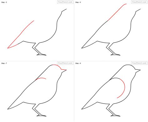 doodle how to make pigeon how do you draw a bird step by step pencil drawing