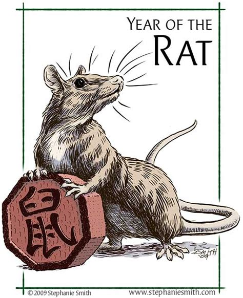 new year the year of the rat year of the rat scribbles scribings