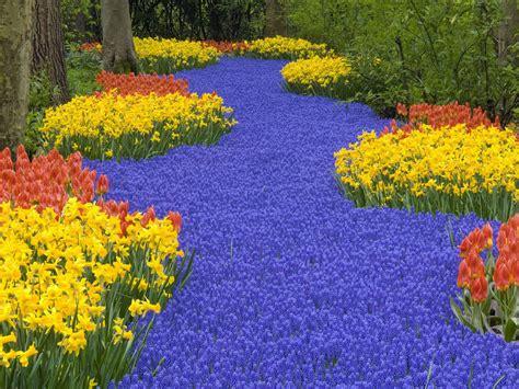 In Gardens And Flowers Bei 223 En Gedanken Beautiful Relaxing Flowers From Nature