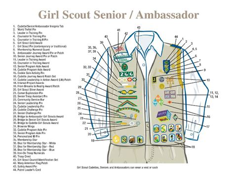 printable girl scout vest pattern girl scout troop 1905 cadette sash and vest
