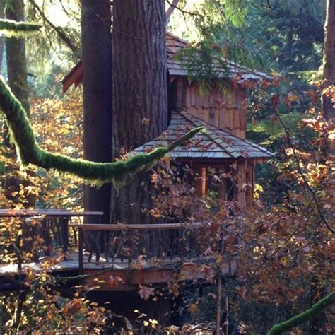 treehouse bed and breakfast 301 moved permanently
