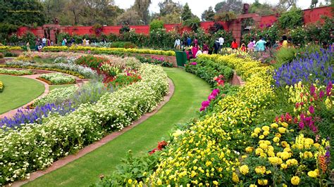 it is time you visit the mughal gardens before they close
