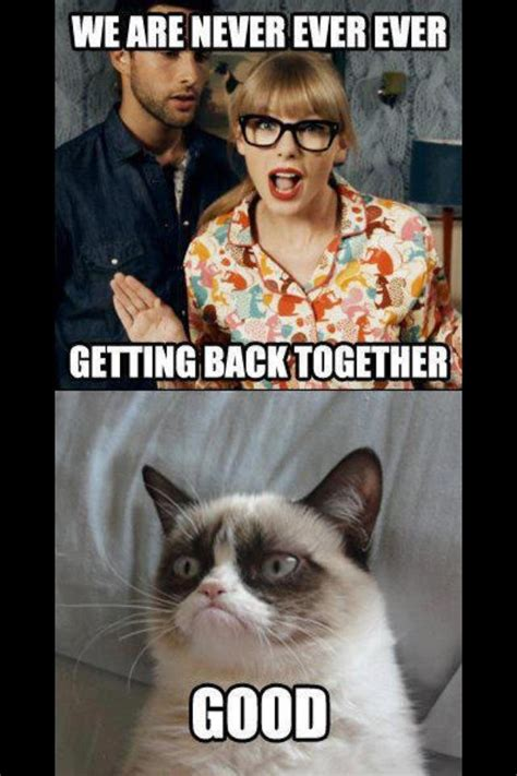 Angry Cat Good Meme - internet fads what s the deal grumpy cat memes