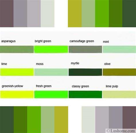 combination color for green natural green color schemes with neutral tones for modern