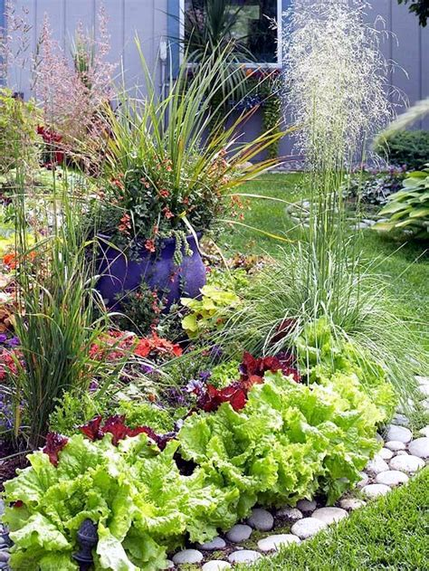 Decorative Vegetable Garden Ideas Stylish Green Decorative Vegetable Garden