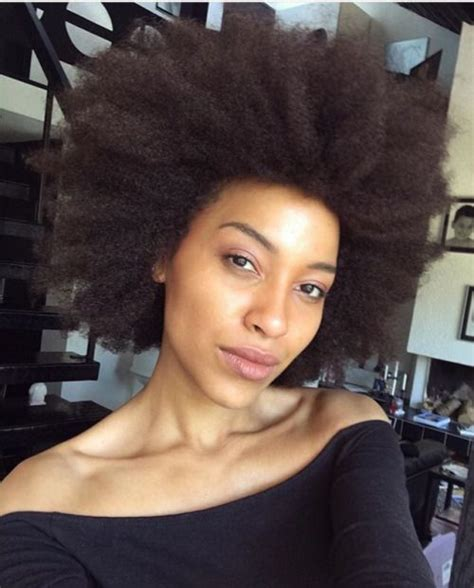 thick coiled hair 1000 images about 4c hair fros on pinterest