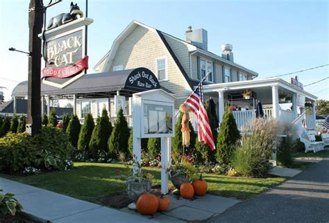 black cat tavern cape cod the shack for fried fresh seafood and