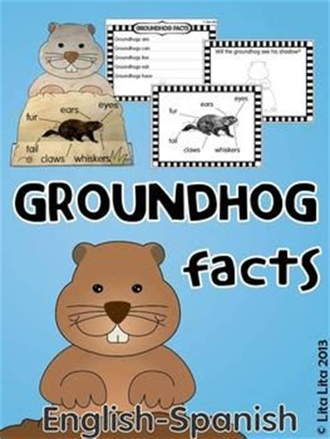 groundhog day trivia groundhog facts