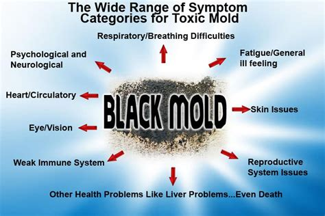 mold in bathroom health symptoms adrenalfatiguerelief com natural anxiety and adrenal