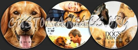 a s purpose dvd a s purpose dvd label dvd covers labels by customaniacs id 245826 free