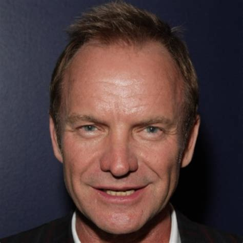 sting hairstyles sting singer biography com