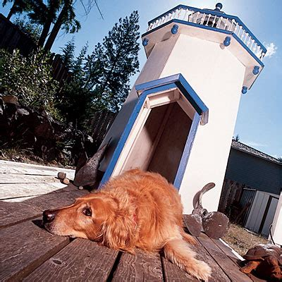 tower dogs 10 stylish houses