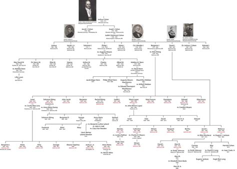 ottoman dynasty family tree ottoman dynasty family tree osmanoğlu family the free