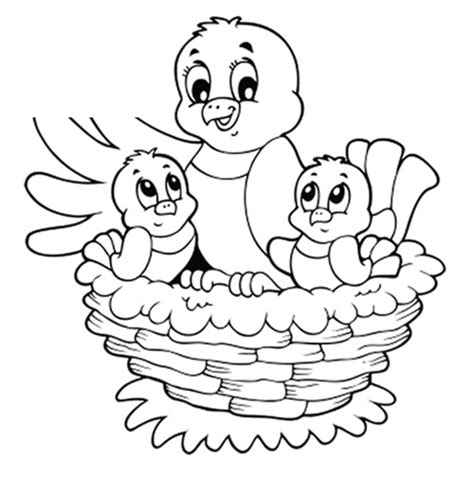 coloring pages of birds in a nest free coloring pages of baby birds nest