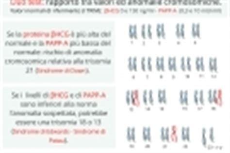 duo test costo ecografia morfologica