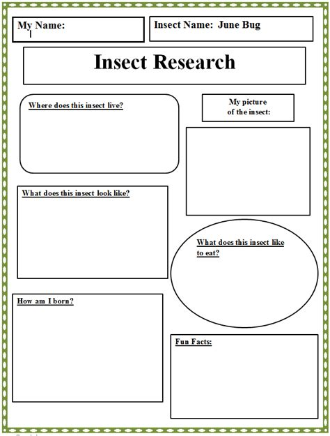 short biography research graphic organizer reading insect research graphic organizer technology lab