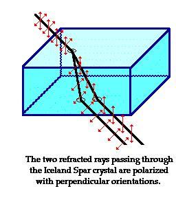 what does polarized light polarization