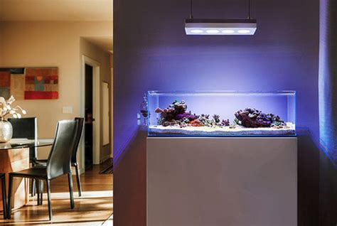 modern aquarium kitchen with a strong visual impact by 20 modern aquariums for cool interior styles home design