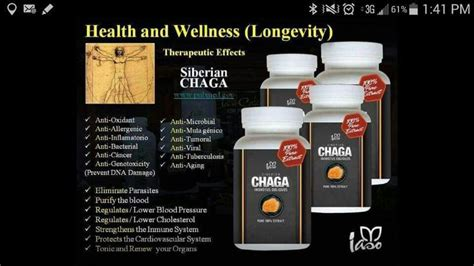 Chaga Detox by Chaga Chaga Chaga Iaso Quot Weight Loss Detox Quot Tea Team