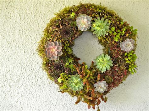 spring wreaths to make make a living wreath for spring hgtv