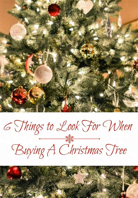 real christmas trees vs artificial trees 6 things to
