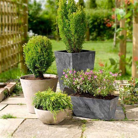 container gardening uk in your garden august suttons gardening grow how