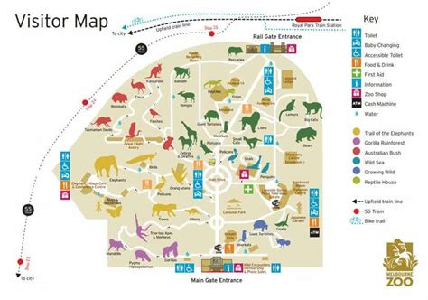 printable zoo maps melbourne zoo entry fee prices tickets address map