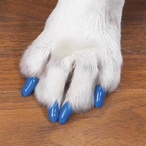 1000 ideas about cat claw nails on pinterest claw nails talon nails and nails