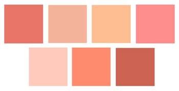 color of coral california livin home coral the sizzle