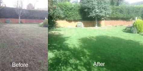 professional lawncare services trugreen herts