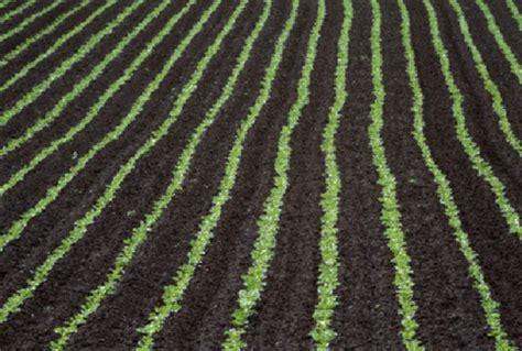 Bioethanol Pour Cheminée 2028 by Solution D Bio 195 169 Thanol Pour Chemin 195 169 E Bio 195 169 Thanol