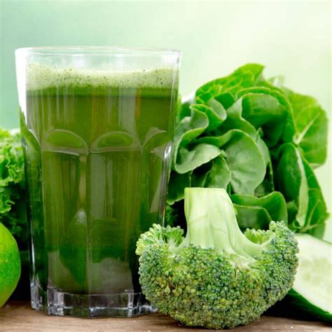 alimentazione candida albicans best 25 candida cure ideas only on candida