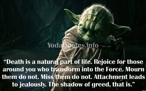 What Side Of Mba Lets You Travel Around The World by Yoda Quotes Master Yoda Quotes Yoda Quotes