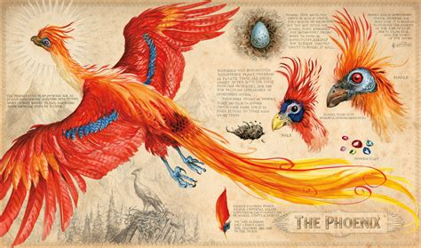 the real fawkes books jim harry potter