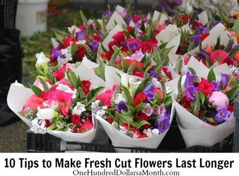 Make Roses Last Longer In Vase by 17 Best Images About Cut Flowers Last Longer On