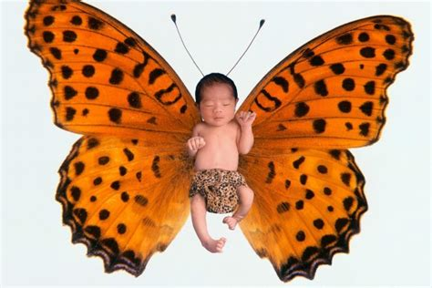 nature names the secret garden baby name blog nameberry butterfly and other nature names from the sky