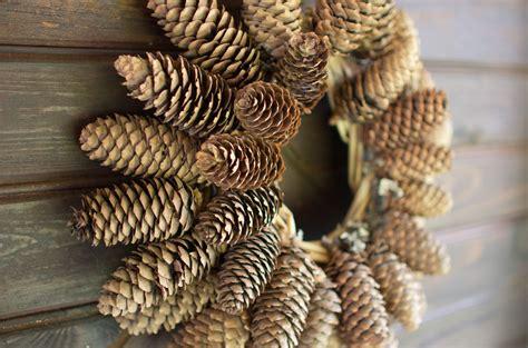 Produk Natur Shoo cone wreath nature shop