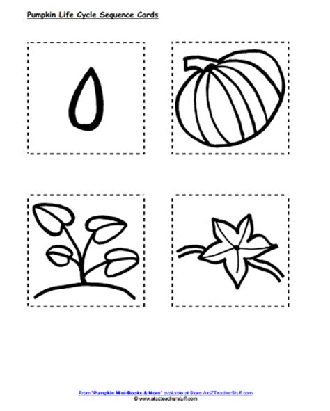 life cycle of a pumpkin coloring page pumpkins lesson plans activities printables and