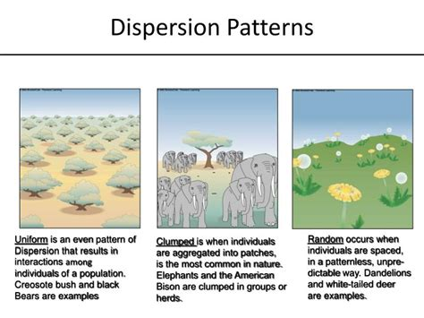 least frequent dispersal pattern in nature ppt biology end of course test eoct study guide