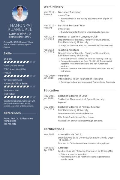 Translator Resume Template by Freelance Translator Resume Sles Visualcv Resume