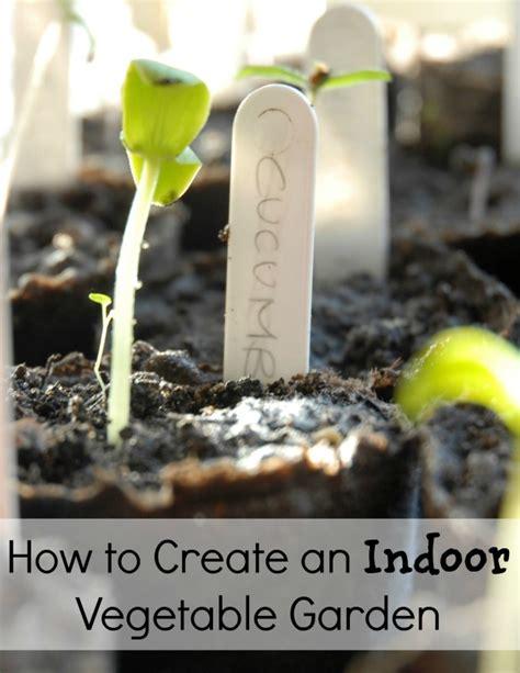 indoor vegetable garden how to create an indoor vegetable garden living a frugal