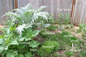 How To Dig A Well In Your Backyard Permaculture In Our Garden Gather And Grow