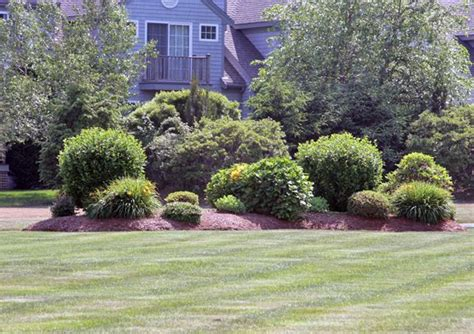 residential landscaping berms and mounds there is nothing natural about this mound of soil of