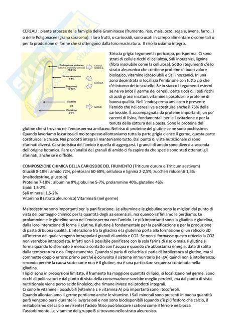 composizione chimica alimenti chimica degli alimenti cereali