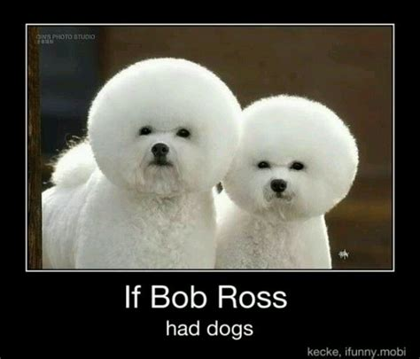 bob ross paintings of animals 17 best ideas about bob ross on bob ross