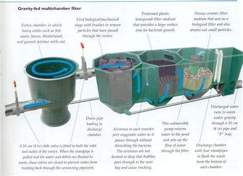 An Introduction To Pond Filtration Systems Future Man