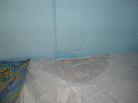 wet bed bed wet pictures free download