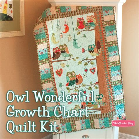 Owl Quilt Kits by Owl Wonderful Growth Chart Quilt Kit Featuring Owl