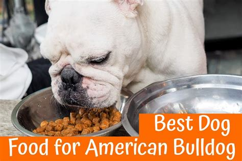 best puppy food 2017 best food for american bulldog guide in 2017 us bones